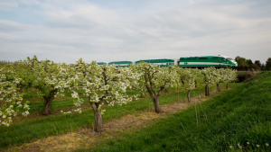 GO Transit will expand 120 kilometers (75 miles) into Southwestern Ontario as part of a pilot program starting Oct. 18.